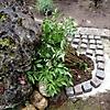 Gartenanlage_7